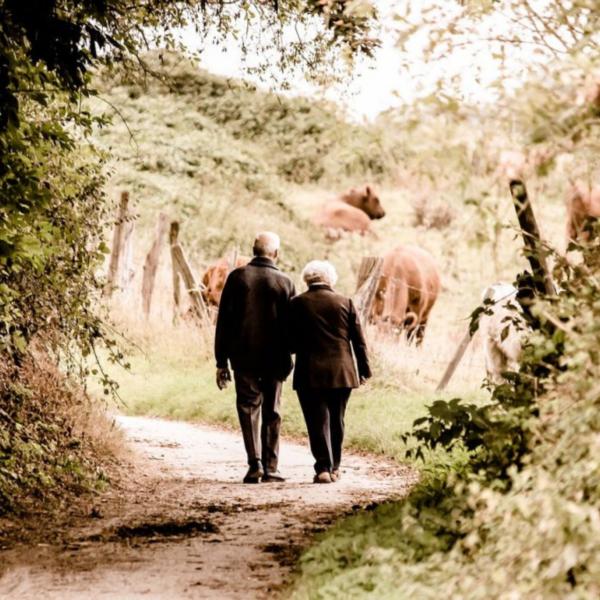 Les aînés, une ressource à valoriser