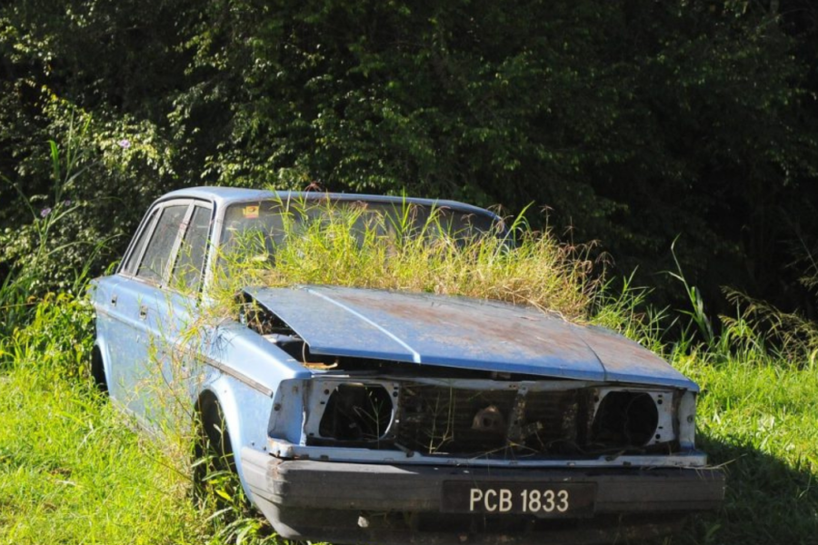 La voiture en campagne