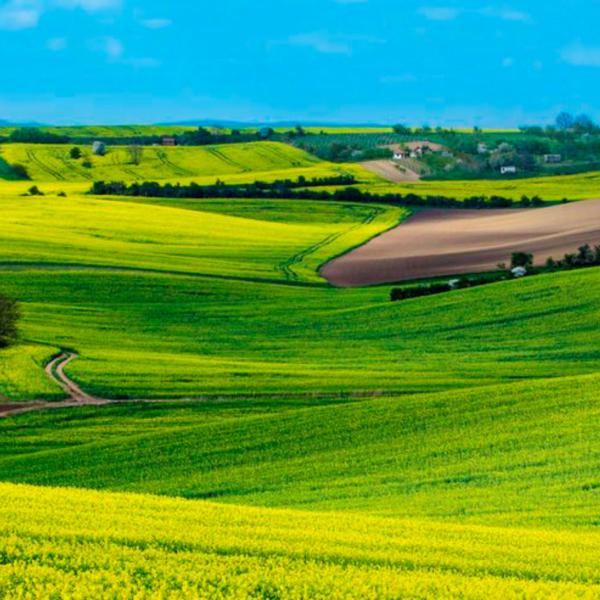 La Ferme de Glutamine propose une agriculture alternative